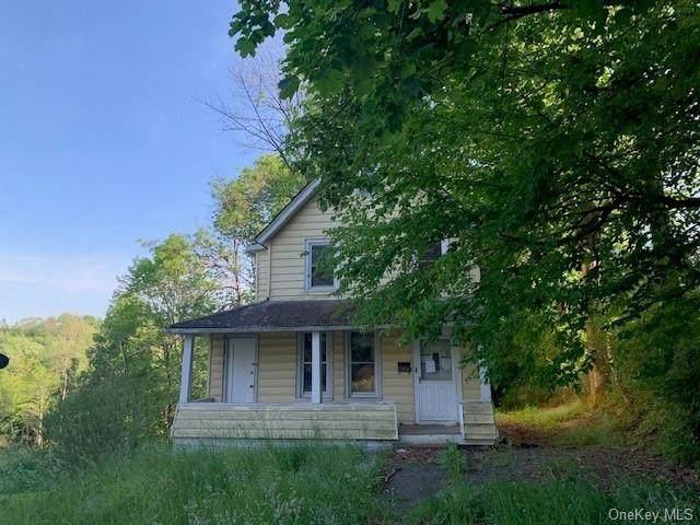 138 Chestnut Street, Liberty, NY 12754 (MLS #H6122193) :: Cronin & Company Real Estate