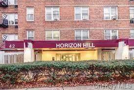 42 Pine Street 5P, Yonkers, NY 10701 (MLS #H6122654) :: RE/MAX RoNIN