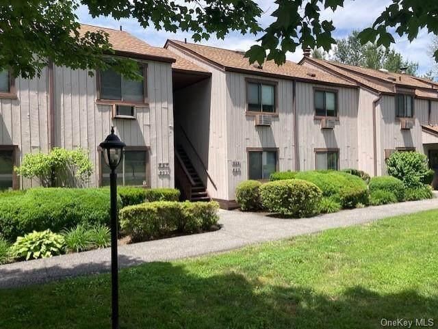 806 Swan Hollow Road, Monroe, NY 10950 (MLS #H6123492) :: Barbara Carter Team