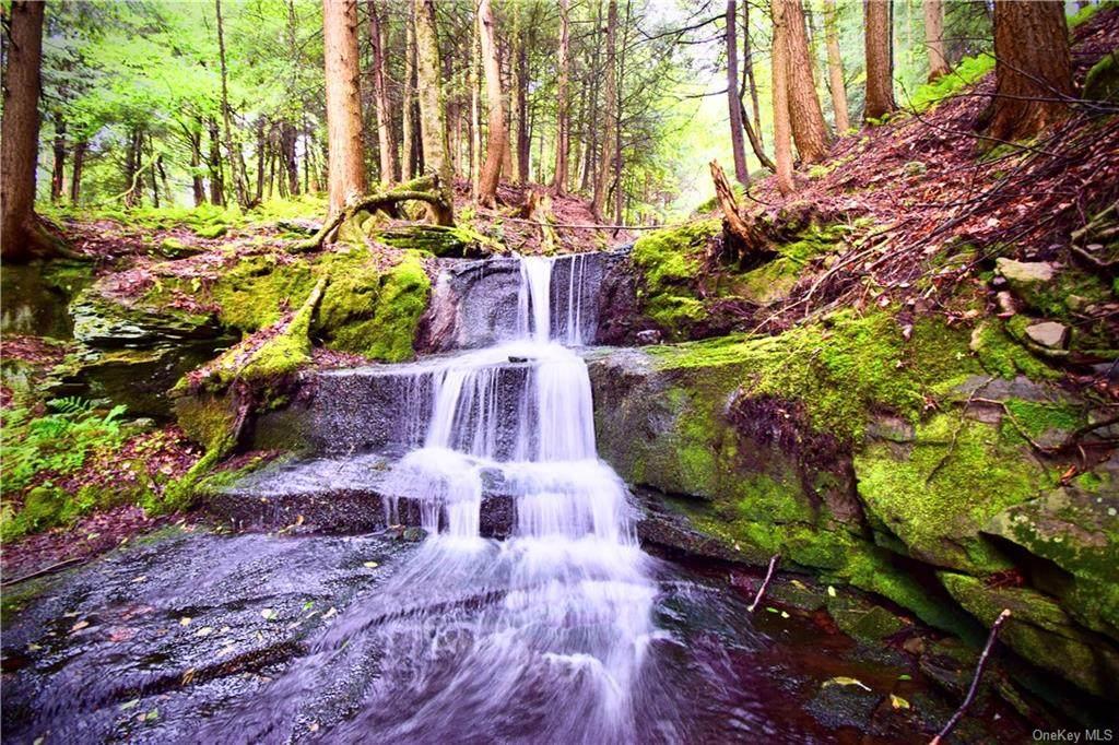 Lot 1 Manor Falls Drive - Photo 1