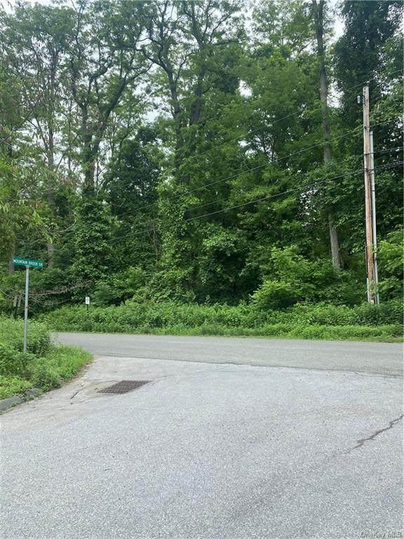 0 Us Route 9, Cold Spring, NY 10516 (MLS #H6123892) :: Carollo Real Estate