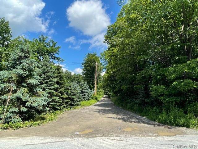 93 Scenic Drive, Clinton Corners, NY 12514 (MLS #H6124366) :: Cronin & Company Real Estate