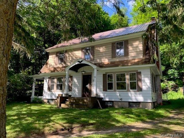 187 Gulf Road, Roscoe, NY 12776 (MLS #H6124663) :: Mark Boyland Real Estate Team