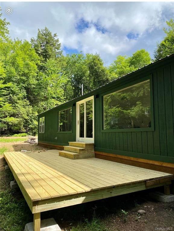 180 Benton Hollow Road, Livingston Manor, NY 12758 (MLS #H6124810) :: Carollo Real Estate