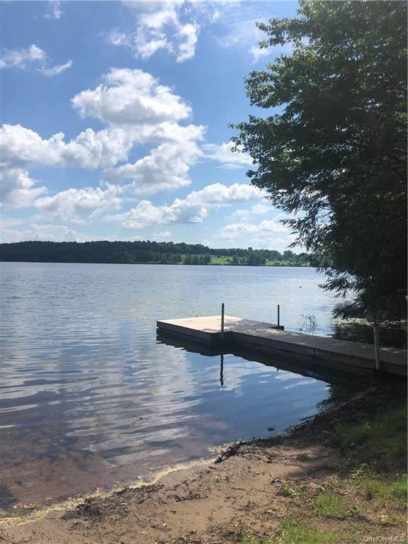 Black Lake Estates Lot #17, Bethel, NY 12720 (MLS #H6125176) :: Keller Williams Points North - Team Galligan