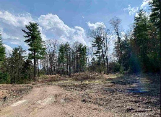 Cedar Drive - Photo 1
