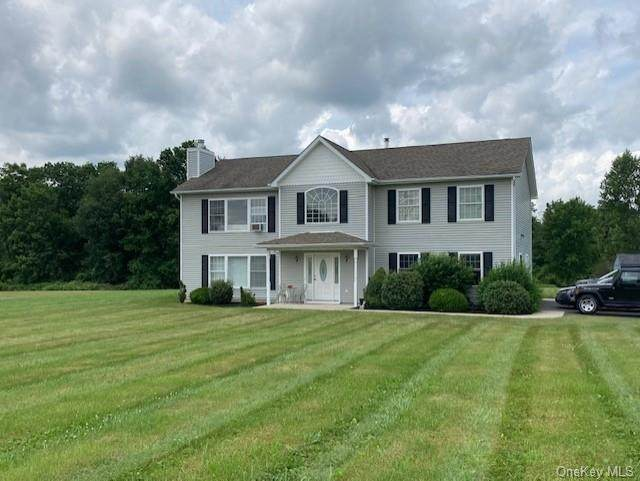 118 Kirbytown Road, Middletown, NY 10940 (MLS #H6128268) :: Carollo Real Estate