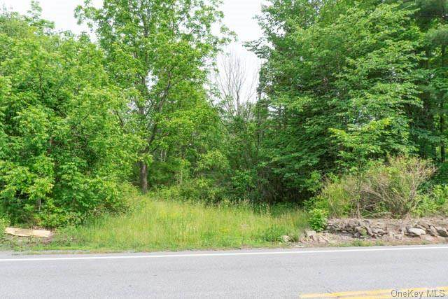 2276 State Route 302, Circleville, NY 10919 (MLS #H6129633) :: Kendall Group Real Estate   Keller Williams