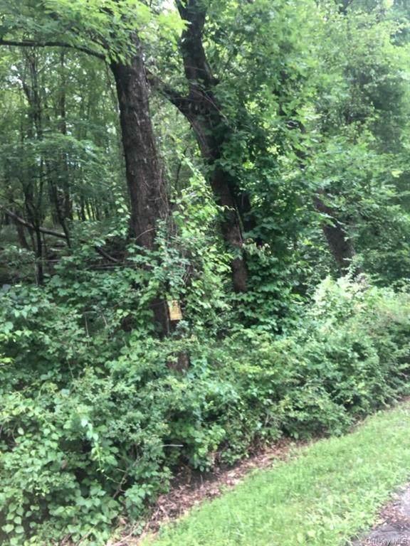 Cascade Mountain Road, Amenia, NY 12501 (MLS #H6129797) :: Cronin & Company Real Estate