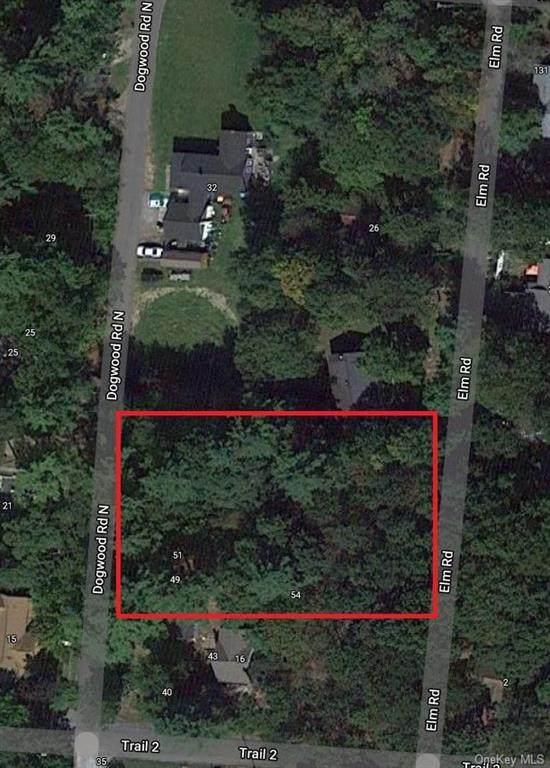 Dogwood Road N, Wurtsboro, NY 12790 (MLS #H6131542) :: Kendall Group Real Estate | Keller Williams