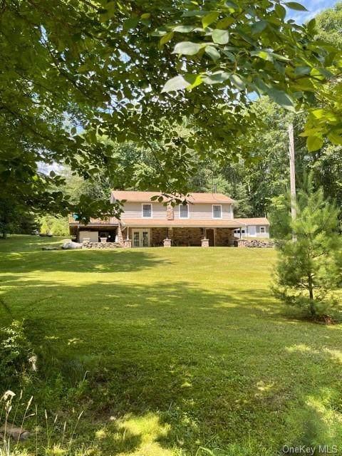 39 Ryans Grove Road, Eldred, NY 12732 (MLS #H6131912) :: Howard Hanna | Rand Realty