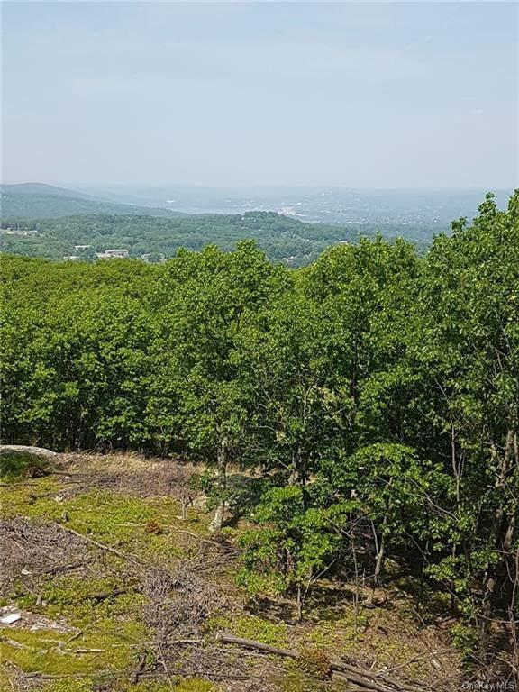 31 High Mountain Road, Pomona, NY 10970 (MLS #H6132351) :: Carollo Real Estate