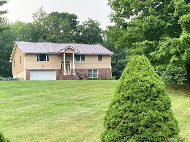 493 Oak Ridge Road, Ellenville, NY 12428 (MLS #H6132813) :: Kendall Group Real Estate | Keller Williams