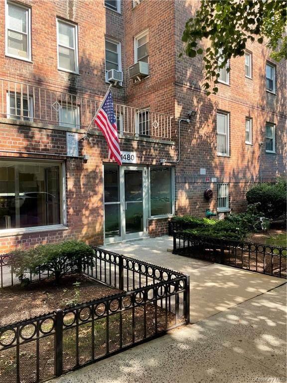 1480 Thieriot Avenue 4K, Bronx, NY 10460 (MLS #H6132868) :: Laurie Savino Realtor