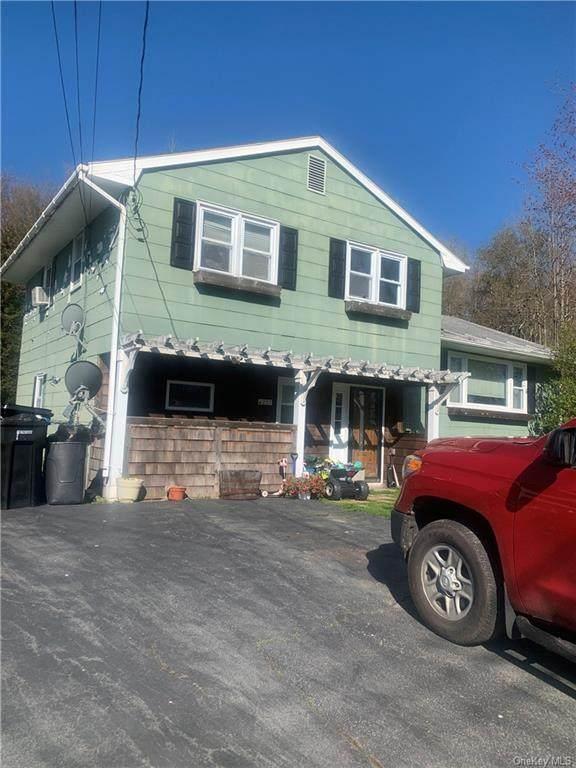 21 Highview Acres, Parksville, NY 12768 (MLS #H6132965) :: Howard Hanna Rand Realty