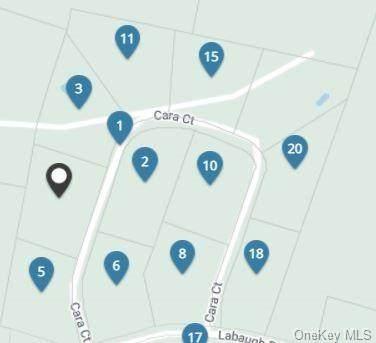 Cara Court Lot 2, Fallsburg, NY 12733 (MLS #H6133330) :: Signature Premier Properties