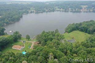 113 Tr 113 Trail, Lake Huntington, NY 12726 (MLS #H6133369) :: Kendall Group Real Estate | Keller Williams