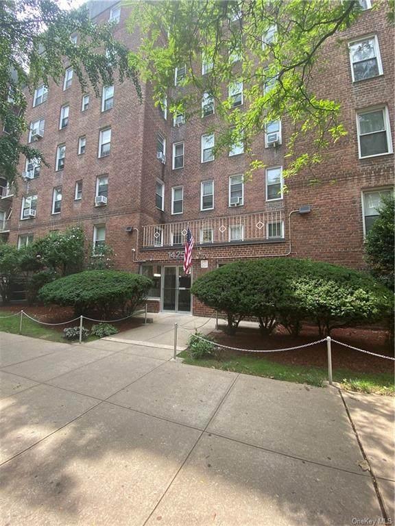 1425 Thieriot Avenue 5J, Bronx, NY 10460 (MLS #H6133475) :: Laurie Savino Realtor