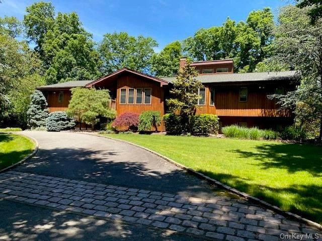 3 Sheilah Court, Suffern, NY 10901 (MLS #H6133709) :: Howard Hanna Rand Realty