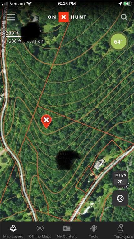203 Grooville Road, Livingston Manor, NY 12758 (MLS #H6134263) :: Signature Premier Properties