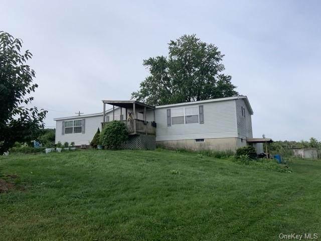 60 Bierstine Lane, Pine Island, NY 10969 (MLS #H6134882) :: Carollo Real Estate
