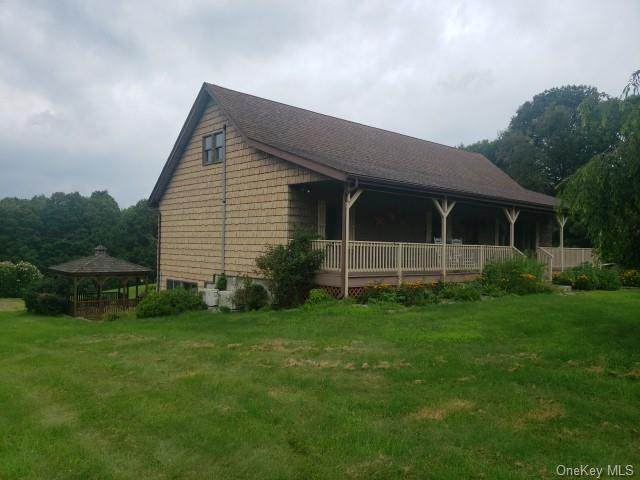 113 Christian Hill Road, Dover Plains, NY 12522 (MLS #H6135222) :: The Clement, Brooks & Safier Team