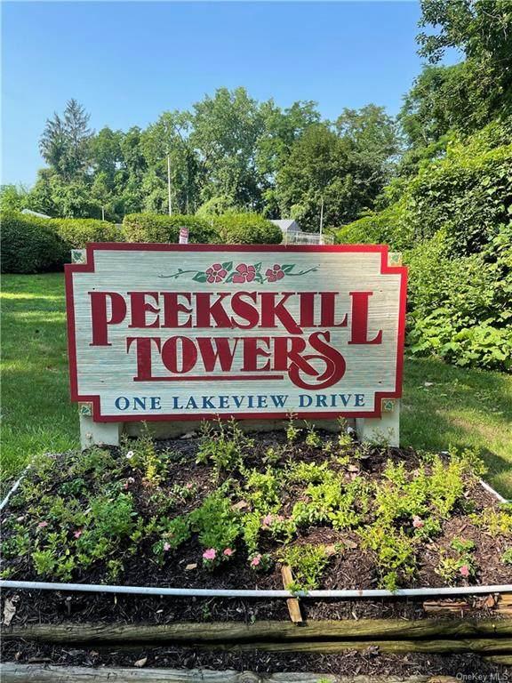 1 Lakeview Drive 5G, Peekskill, NY 10566 (MLS #H6135477) :: Laurie Savino Realtor