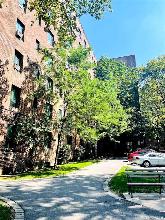 2240 E Tremont Avenue Mg, Bronx, NY 10462 (MLS #H6137108) :: Goldstar Premier Properties