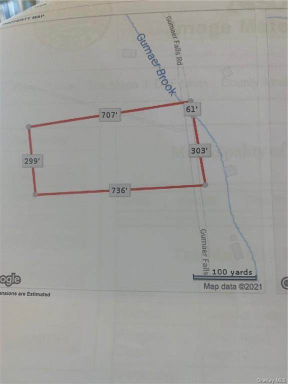 LOT 10 Gumaer Falls Road, Wurtsboro, NY 12790 (MLS #H6137298) :: Corcoran Baer & McIntosh