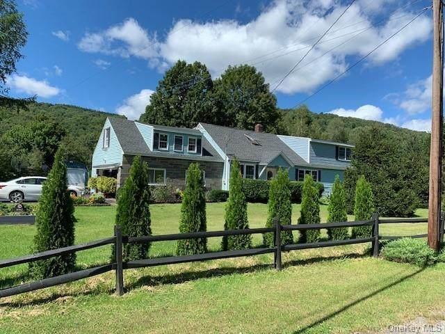 8982 County Hwy 7, Roscoe, NY 12776 (MLS #H6141142) :: Cronin & Company Real Estate