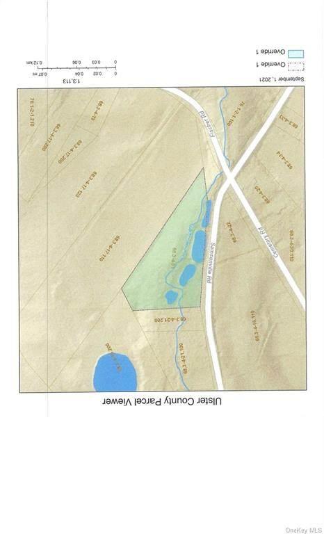 Samsonville Road, Rochester, NY 12446 (MLS #H6141389) :: Carollo Real Estate