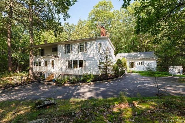 52 Pine Woods Road, Hyde Park, NY 12538 (MLS #H6142096) :: Goldstar Premier Properties