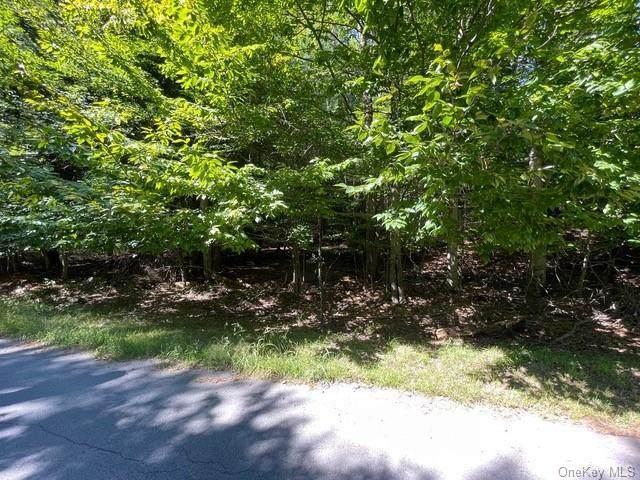 Lot 28 Gina Lane, Bethel, NY 12720 (MLS #H6142749) :: Goldstar Premier Properties