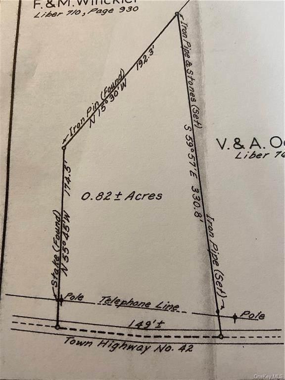 TR 42 Daub Road, Cochecton, NY 12726 (MLS #H6142790) :: Kendall Group Real Estate | Keller Williams
