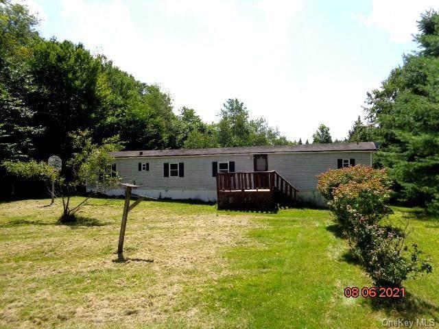 116 Moore Road, Woodbourne, NY 12788 (MLS #H6143418) :: Goldstar Premier Properties