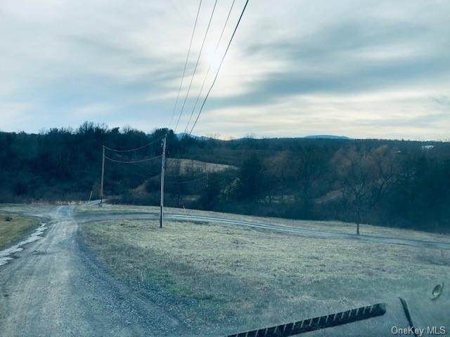 Embought Rd Road, Catskill, NY 12414 (MLS #H6143767) :: Kendall Group Real Estate | Keller Williams