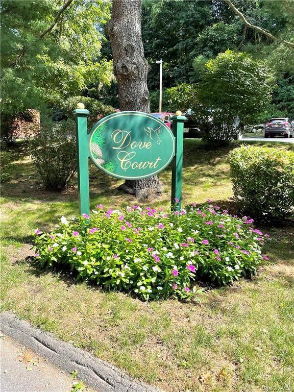 7 Dove Court J, Croton-On-Hudson, NY 10520 (MLS #H6144074) :: Laurie Savino Realtor