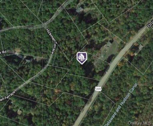 Hickman Terrace, Wurtsboro, NY 12790 (MLS #H6144208) :: The McGovern Caplicki Team