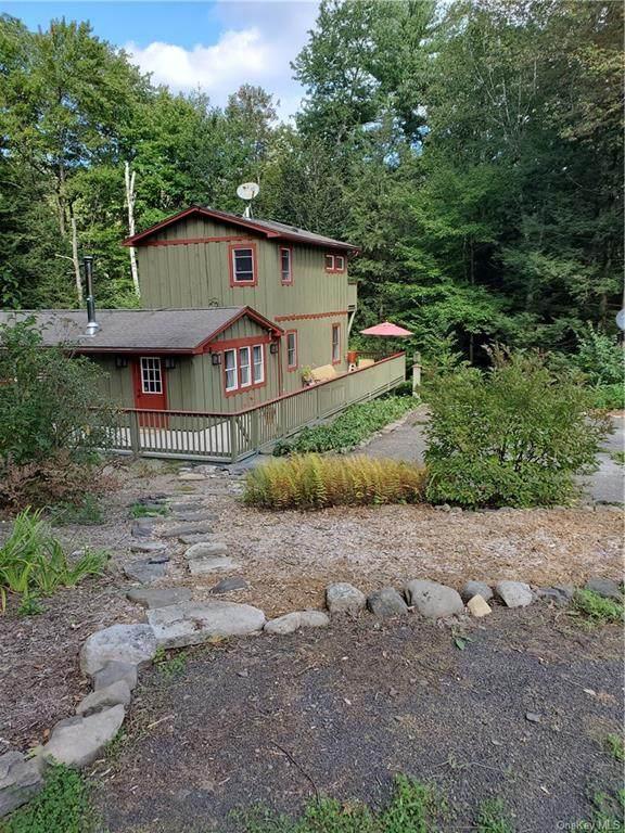 147 Trails End Road, Kerhonkson, NY 12446 (MLS #H6144928) :: Corcoran Baer & McIntosh