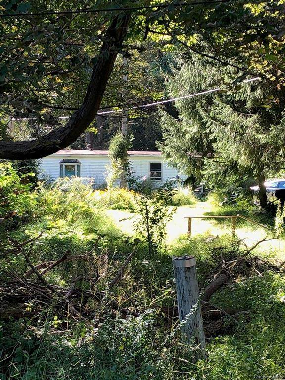 585 Old State Route 22, Dover Plains, NY 12522 (MLS #H6144959) :: Goldstar Premier Properties