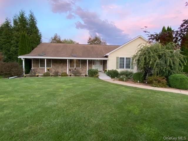 16 Carol Anns Way, Saugerties, NY 12477 (MLS #H6145380) :: Cronin & Company Real Estate