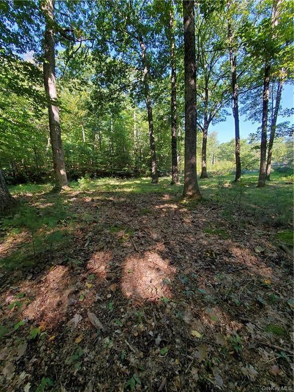 4-8 Camp Adventure Road, Kerhonkson, NY 12446 (MLS #H6145655) :: Corcoran Baer & McIntosh