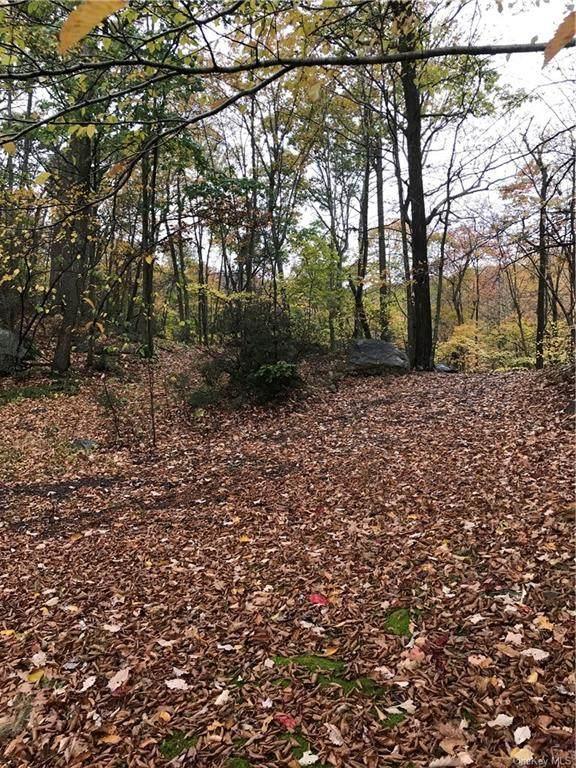 Eagle Mountain Road, Tuxedo Park, NY 10987 (MLS #H6146349) :: Cronin & Company Real Estate