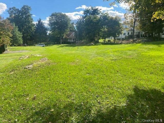 10 Danand Lane, Patterson, NY 12563 (MLS #H6146466) :: Corcoran Baer & McIntosh