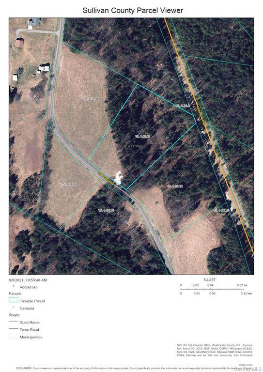 Lot 4 Old County Road, Cochecton, NY 12726 (MLS #H6147457) :: Corcoran Baer & McIntosh