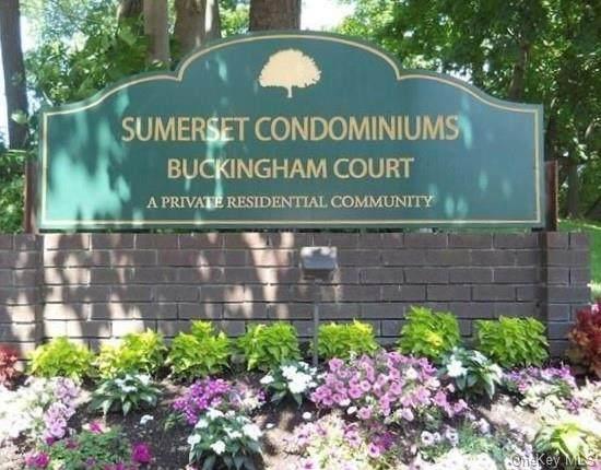 25 Buckingham Court, Pomona, NY 10970 (MLS #H6148637) :: Corcoran Baer & McIntosh