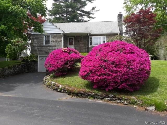 4 Tree Haven Lane, New Windsor, NY 12553 (MLS #H6149627) :: Signature Premier Properties