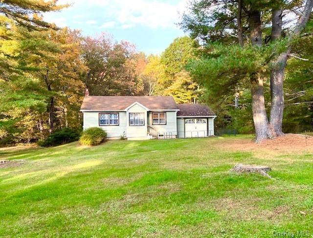 117 Hillside Road, Barryville, NY 12719 (MLS #H6149871) :: Cronin & Company Real Estate
