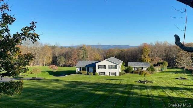 246 Budd Road, Woodbourne, NY 12788 (MLS #H6150066) :: Cronin & Company Real Estate