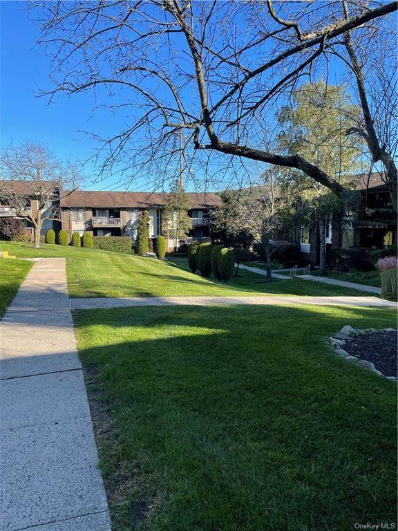 134 Country Club Lane #411, Pomona, NY 10970 (MLS #H6150340) :: Corcoran Baer & McIntosh
